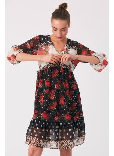 Robin Robin Çiçek Desenli Tül Elbise Krem Krem